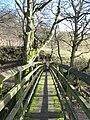 Footbridge over Rookhope Burn (2) - geograph.org.uk - 728967.jpg