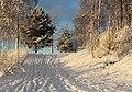Footpath Pikisaari Oulu 20131124 02.jpg
