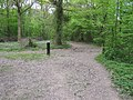 Footpath into Hamstreet Nature Reserve - geograph.org.uk - 1274497.jpg