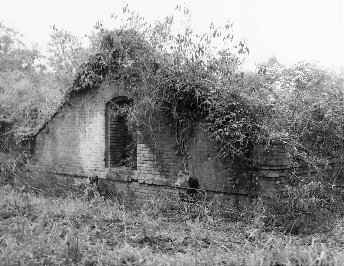 Plantation St George Island For Sale