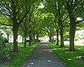 Foster Park - Denholme - geograph.org.uk - 840489.jpg