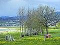 Frauenwinkel 2012-04-22 17-20-14 (P7000).JPG