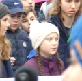 FridaysForFuture Hamburg (cropped 3).png