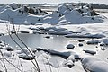 Frozen field - geograph.org.uk - 1154610.jpg