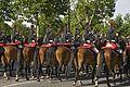 Gardes Républicaine queues et crinières.jpg
