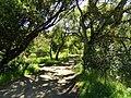 Garland Ranch Regional Park - Carmel Valley, CA - DSC06896.JPG