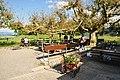 Gasthaus Insel Ufenau 2011-07-25 17-39-10.JPG