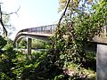 GeisenheimSchnakenbrückeB42.JPG