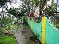 GeneralEmilioAguinaldo,Bixa orellanajf9216 06.JPG