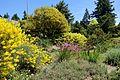 General view - UBC Botanical Garden - Vancouver, Canada - DSC08381.jpg