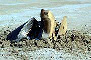Genesis wreck