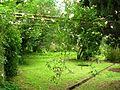 Giardino d iNinfa 45.jpg