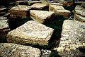 Glac shepard formation limestone boulders car0433.jpg