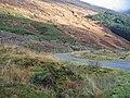 Glen Shiel forest track - geograph.org.uk - 1054119.jpg