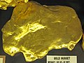 Gold nugget (replica) (found 23 May 1878) (Victoria, Australia) (17073401868).jpg