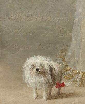 The White Duchess - Image: Goya Alba 1, Detail