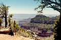 Grand Canyon North Rim04.jpg