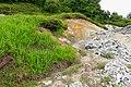 Grass - Mount Osore - Mutsu, Aomori - DSC00527.jpg