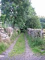 Green lane - Lôn las - geograph.org.uk - 498330.jpg