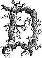 Guida della montagna pistoiese, 1878 (page 67 crop).jpg
