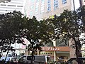 HK Shek Tong Tsui Hill Road sitting-out area park near Des Voeux Road West October 2020 SS2 02.jpg