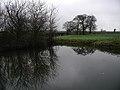 Hallfield, Burstwick - geograph.org.uk - 298228.jpg