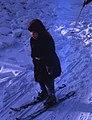Hammond Slides Lenin Hills 02.jpg