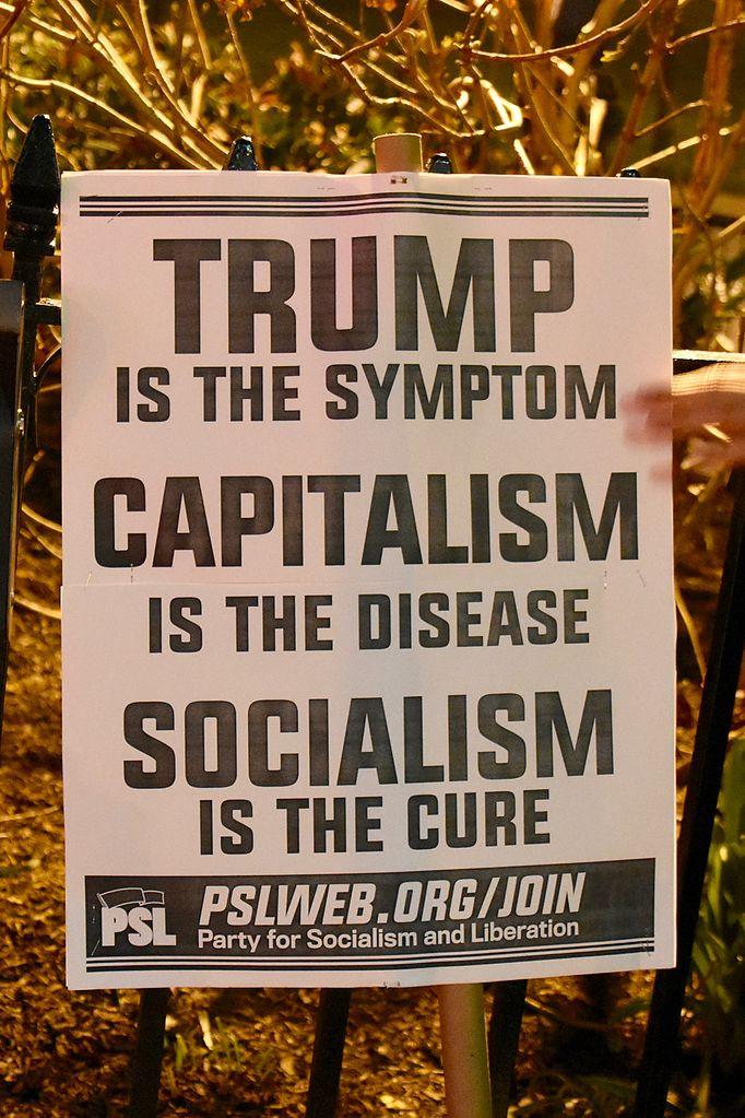 Image result for socialism