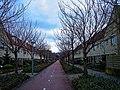 Harderwijk - Drielanden - Chopindreef - View ENE II.jpg