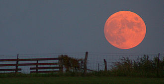 Full moon - A harvest moon. Its orange color is due to its closeness to the horizon, rather than being unique to harvest moons.