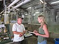 Hatchery manager interview (7644131468).jpg