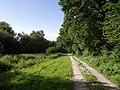 Hawkchurch Footpath 16 - geograph.org.uk - 472132.jpg