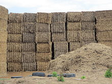 Hay bales more outside stack showing stack size near Yass Australia photo taken November 2015 04.JPG
