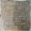 Heidelberg Maja Bitsch.png