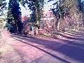 Heiloo - panoramio - Heiloo (50).jpg