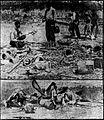 Herrin Massacre - 27 June 1922 Duluth Herald.jpg