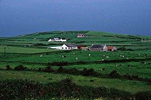 Doonbeg (Killard) - Hillside in the parish
