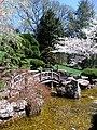 Hillwood Gardens in April (17597663665).jpg