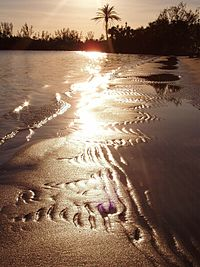 Hobe Sound National Wildlife Refuge beach at dawn.jpg
