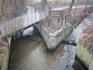 River bifurcation - Bifurcation in Hövelhof, Germany