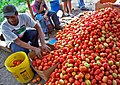 Honduras- Improved Agricultural Diversification Assist in Economic Growth (5842119069).jpg
