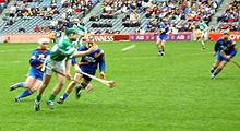 Hurling Deutsch