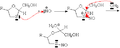 Hydrolyse oxathiolane NO.png