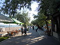 Hyrdopark Luzanivka 18.jpg
