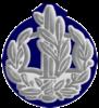 IDF RASAR Avir.png