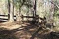 Ichetucknee Springs State Park Overlook 1.jpg