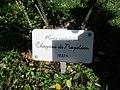 Ile aux Roses 012 (2).jpg