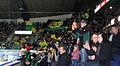 Ilves fans.jpg