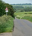 Ingarsby Lane near Houghton on the Hill - geograph.org.uk - 456082.jpg