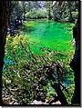 Inutile titolare , il lago Verde - panoramio.jpg